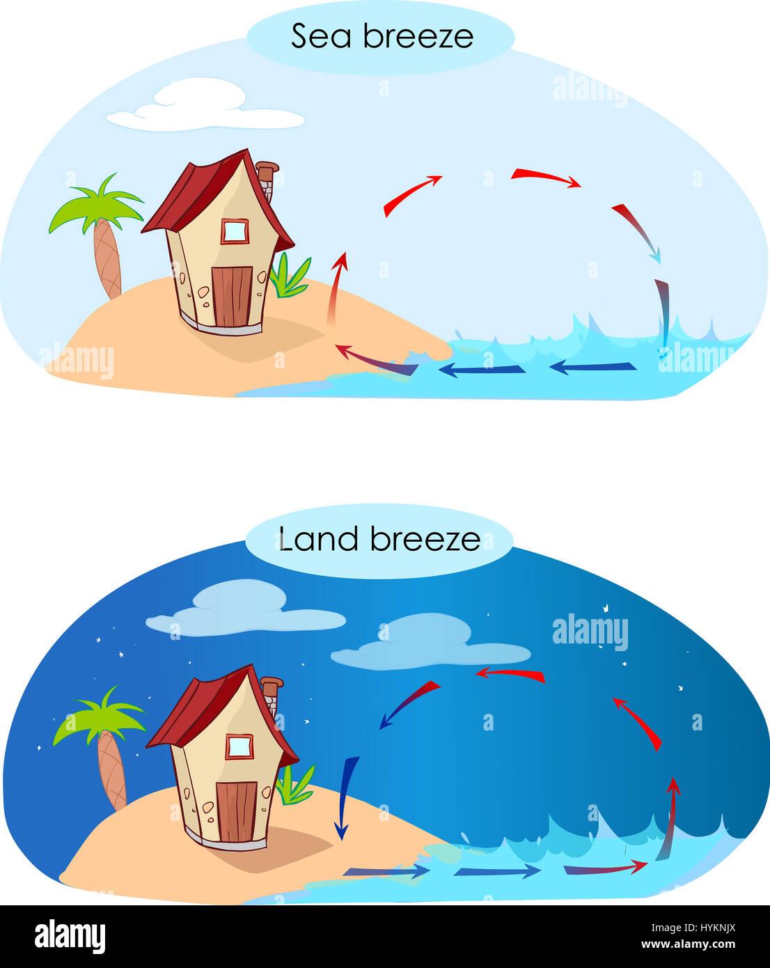 Illustratiion Vectorial De Una Brisa Marina Y La Brisa
