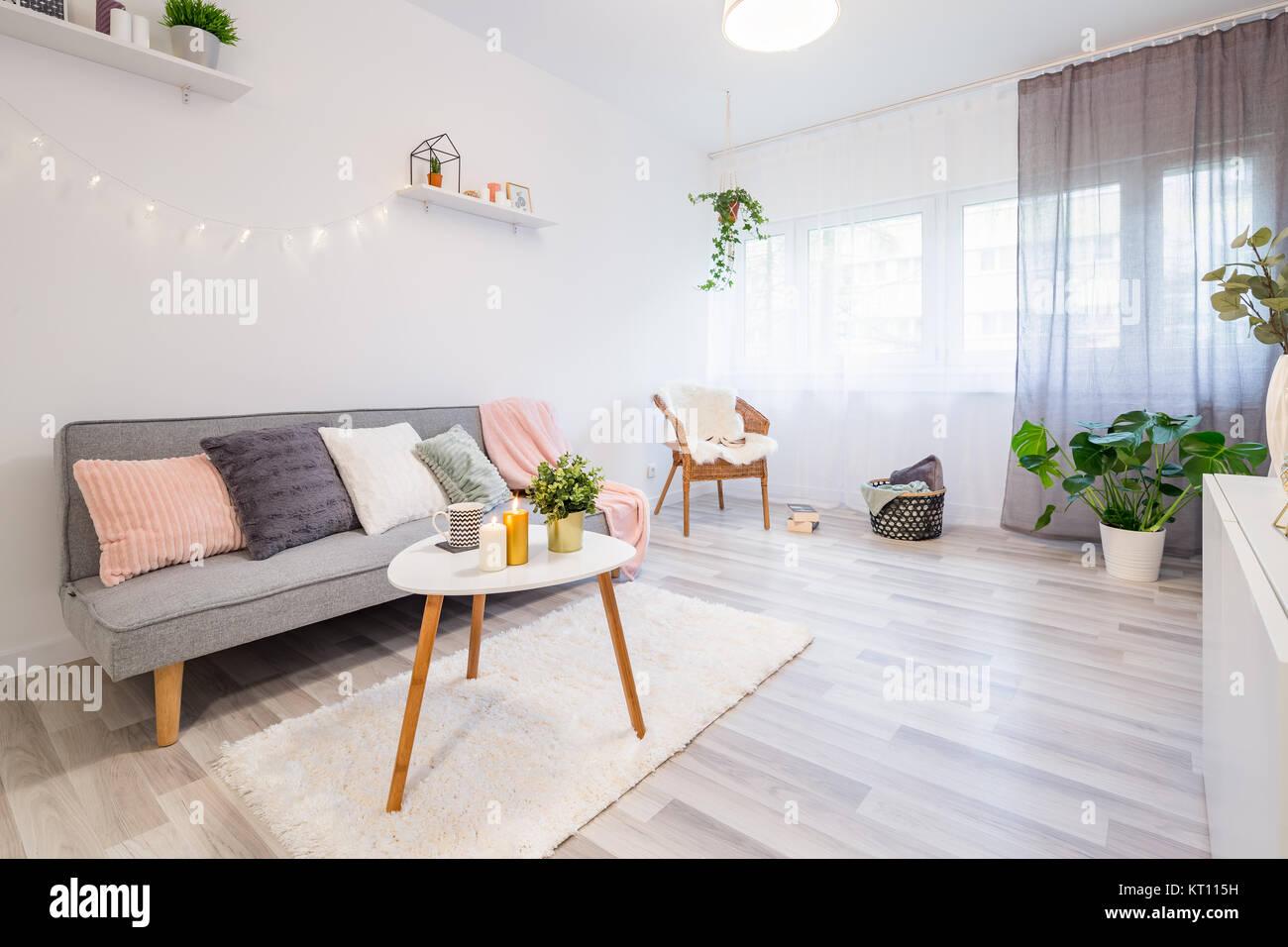 https www alamyimages fr photo image canape avec coussins une table basse et shaggy tapis salon scandinave 169667949 html