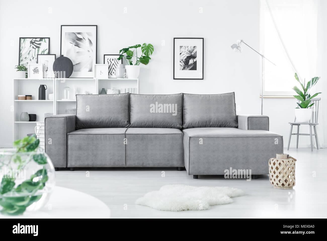 https www alamyimages fr canape d angle gris en blanc permanent salon interieur avec des plantes vertes et de nombreuses affiches image181279896 html