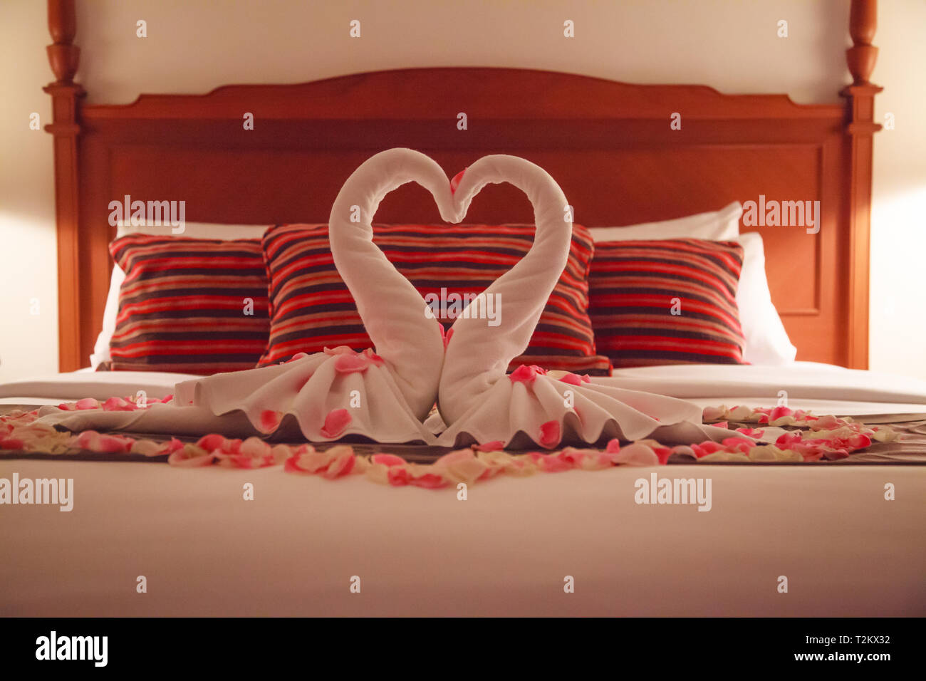 https www alamyimages fr chambre a coucher romantique interieur kissing swan serviettes origami rose frais et parseme de petales de rose blanche decoration sur le lit pour couple weddin image242612022 html