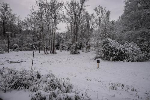 2017 Greenville Snow (11 of 18)