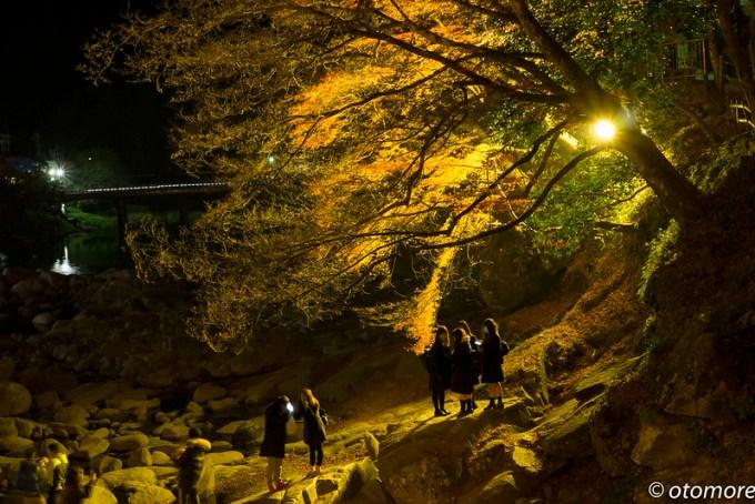 香嵐渓ライトアップ3