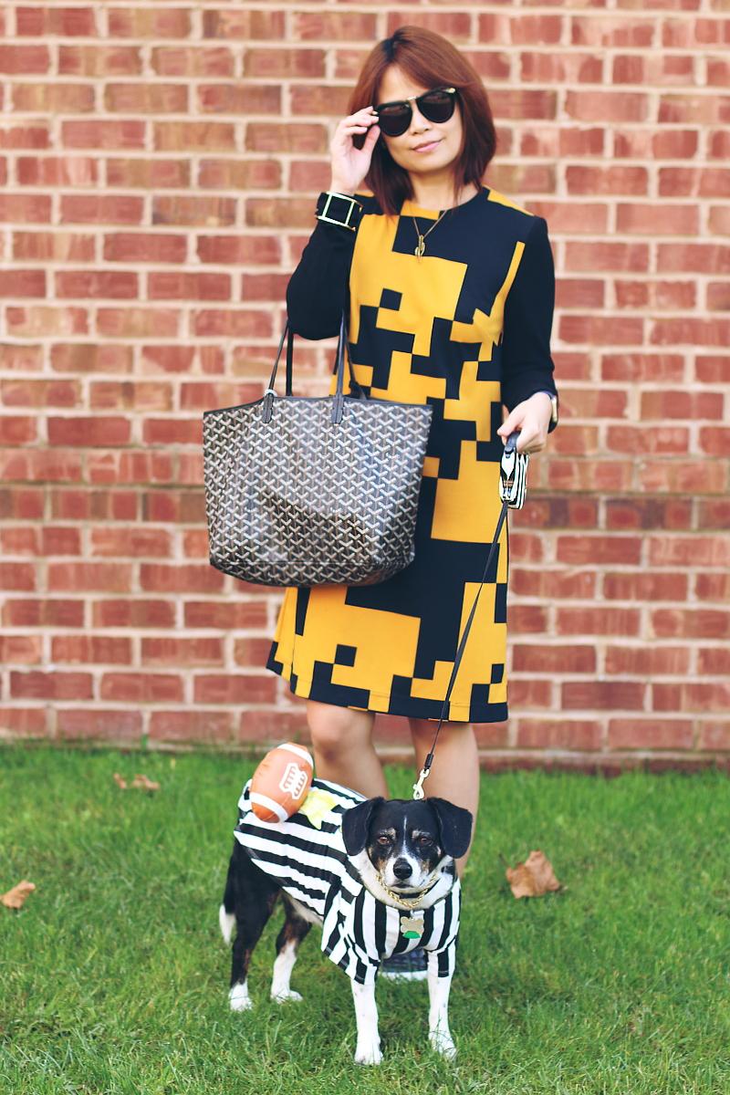 black yellow dress, referee dog, halloween costume