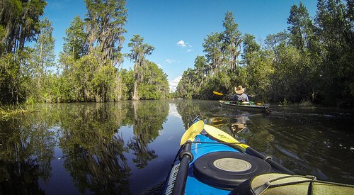 Lowcountry Unfiltered at Okefenokee-125