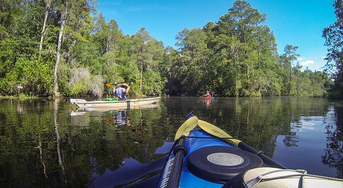 Lowcountry Unfiltered at Okefenokee-136