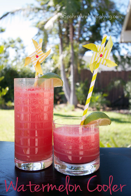 Watermelon Slushie Cooler
