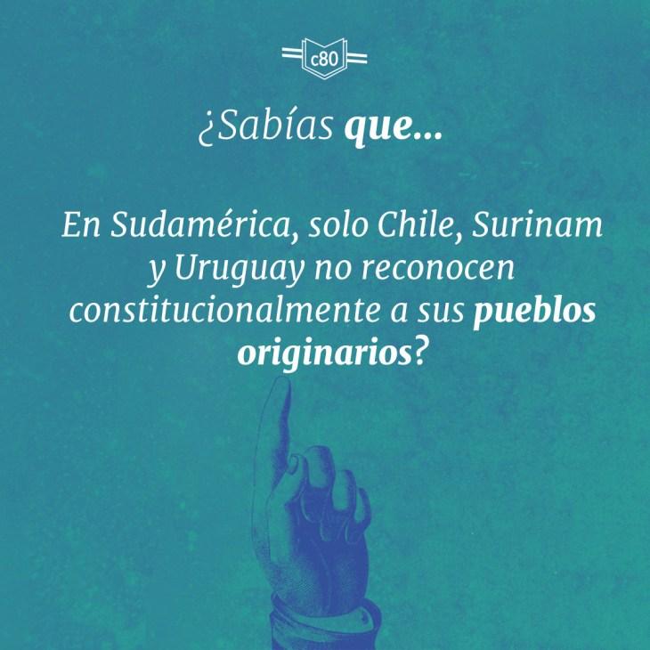 pueblos originarios en la constitución