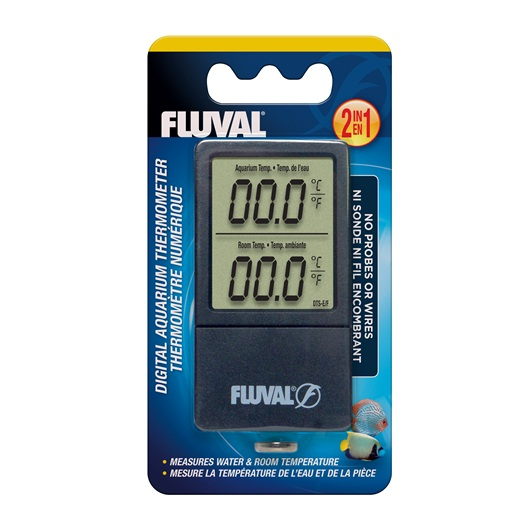 Large Thermometer Digital Display