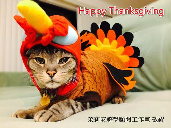 Thanksgiving-Turkey-Cat-Costume_meitu_1