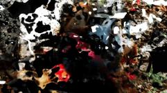 vlcsnap-2016-05-10-15h42m56s92