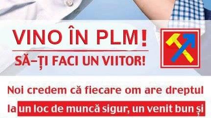 plm_50302000