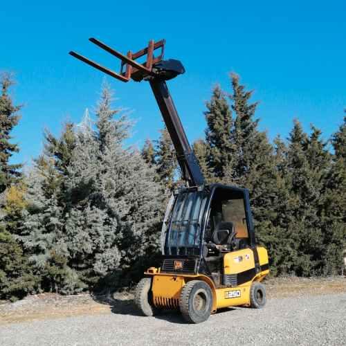 Manipuladora telescòpica JCB 25D 400cm de segona mà en venda a cabauoportunitats.com Balaguer - Lleida - Catalunya
