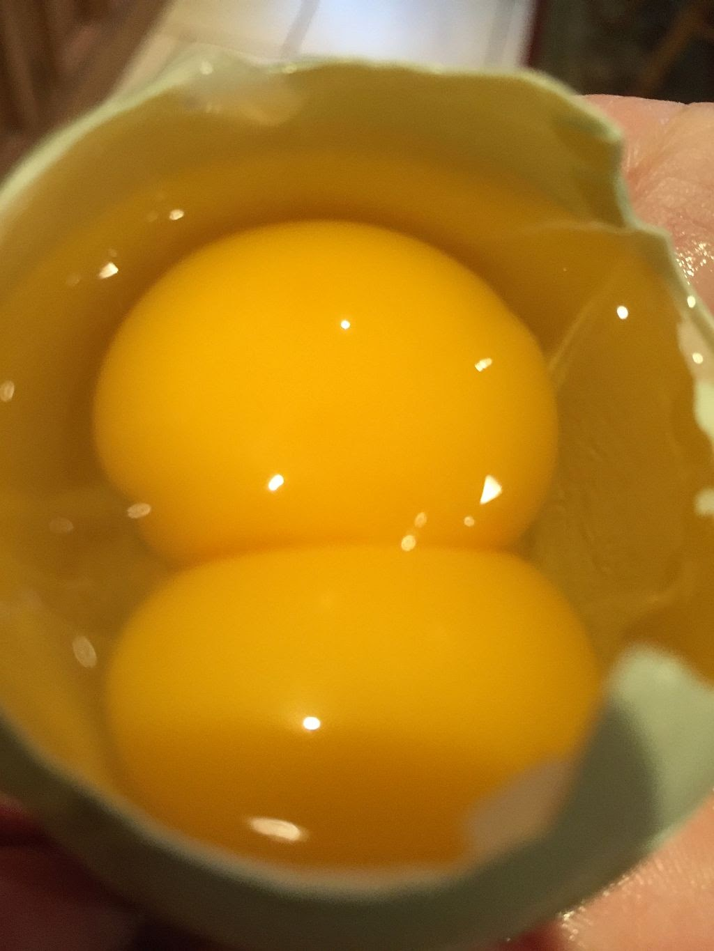 A double yoke egg, One Chicken's Blog at Cabelo in Limes Road, Tettenhall, Wolverhampton, WV6 8QZ