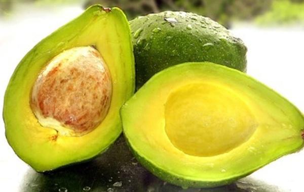 Resultado de imagem para imagens de abacates