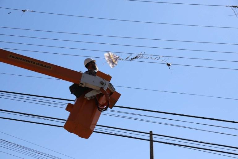 Pipa na rede elétrica (Foto Daniela Catisti)