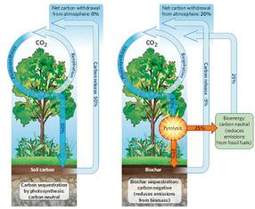 Carbon_cycle_5
