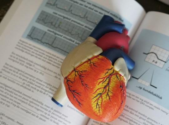 La cohérence cardiaque, un atout anti-stress
