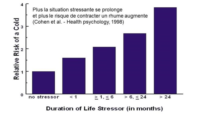 Stress rhume JPEG