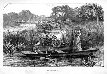 In the Punt