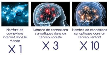 20161027_cerveau-connexions