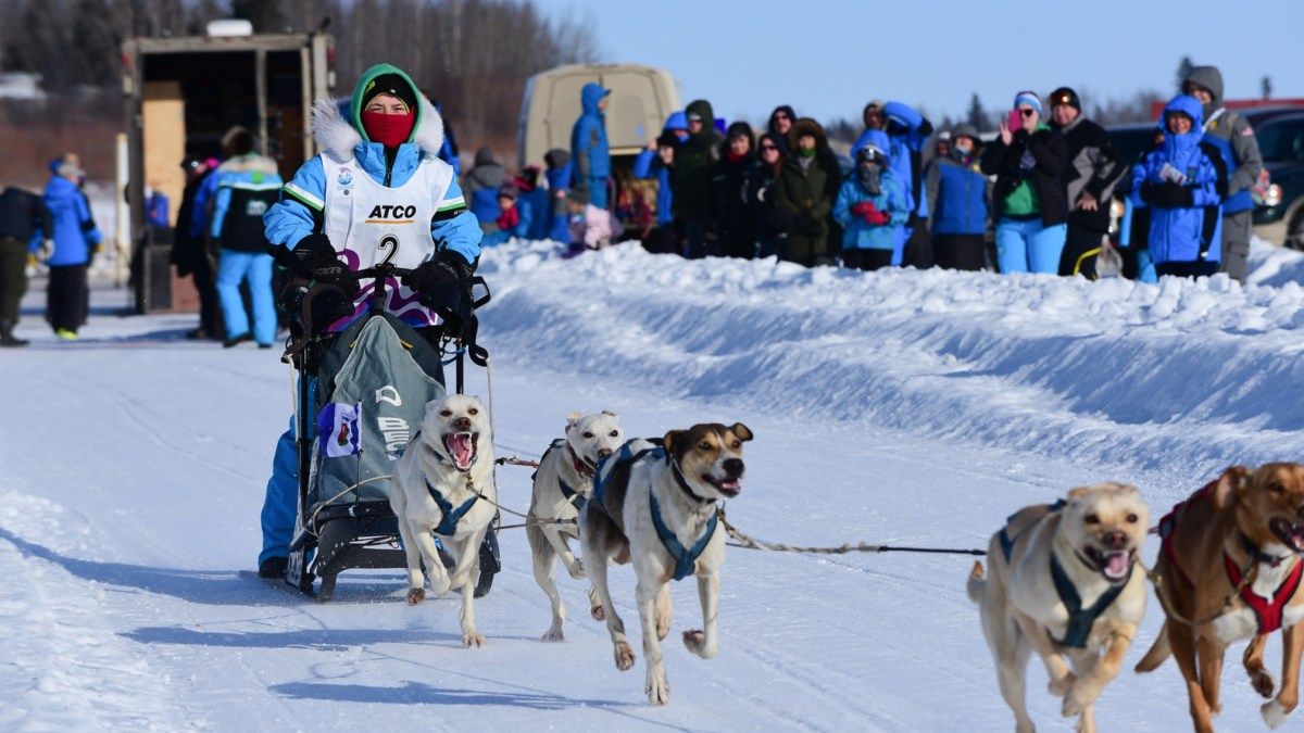 Three NWT dog mushing cousins reach the podium in one day