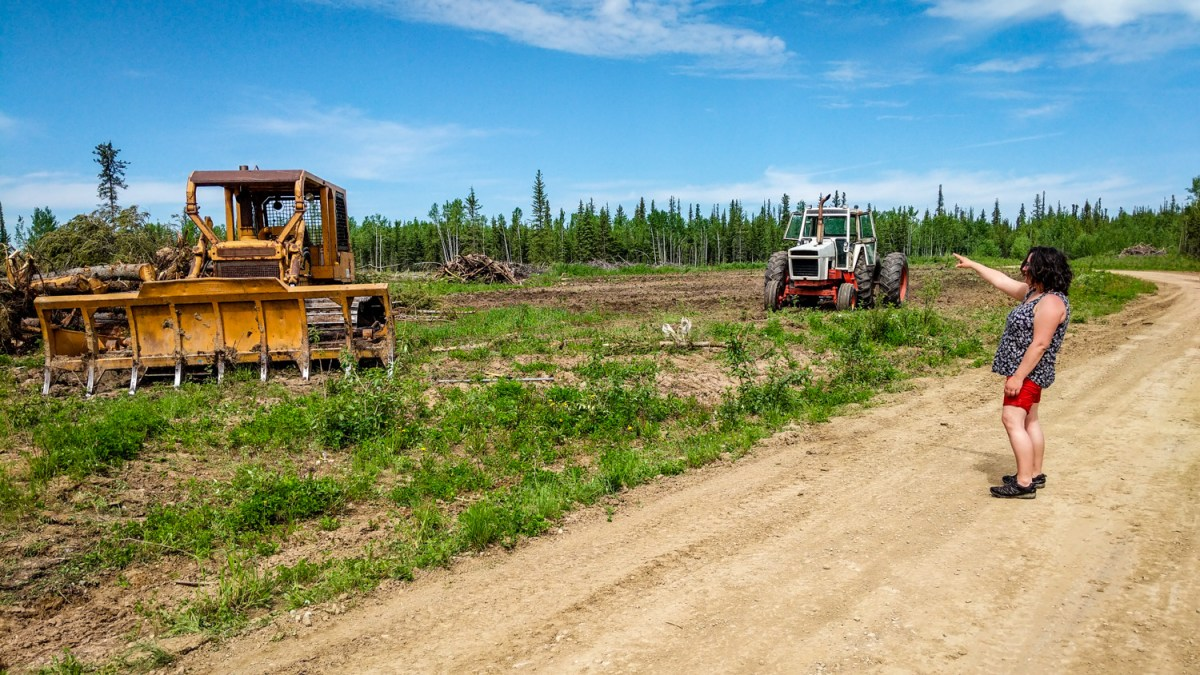 Hay River family plans 'NWT's largest commercial farm'