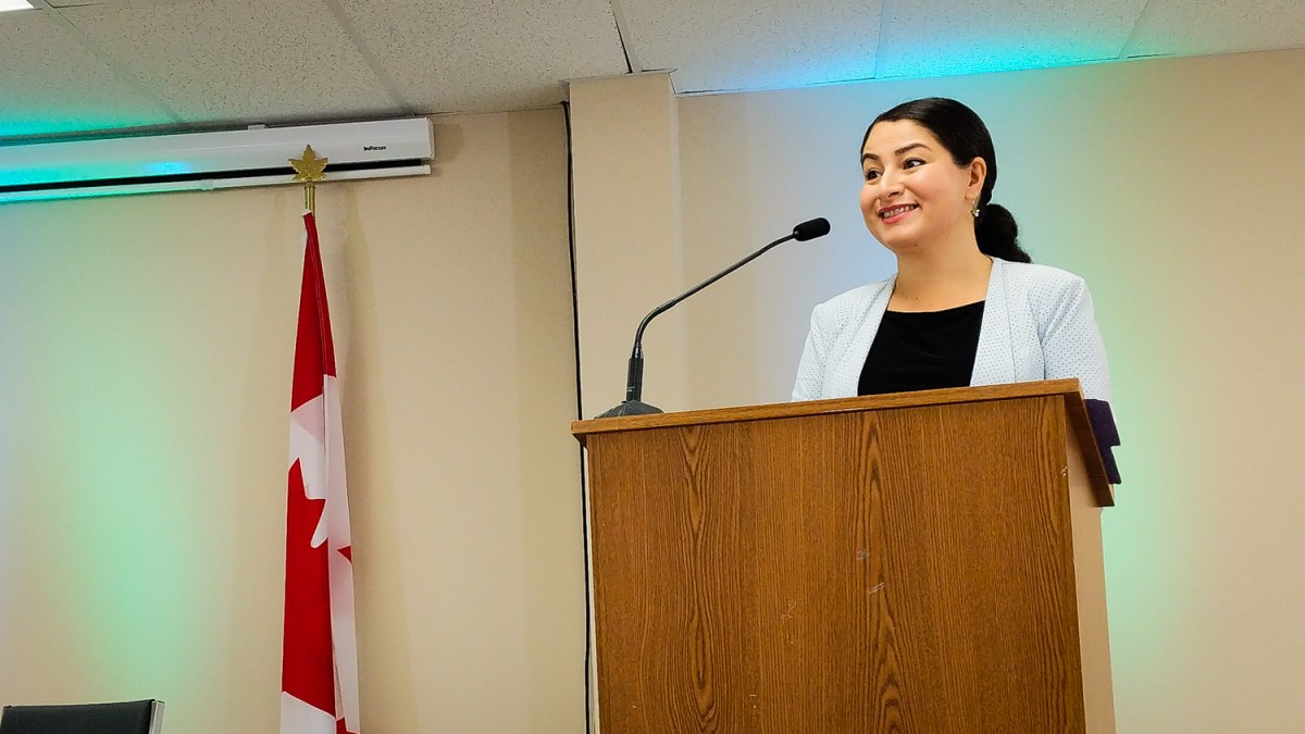 Federal government commits $465K to two NWT women's programs