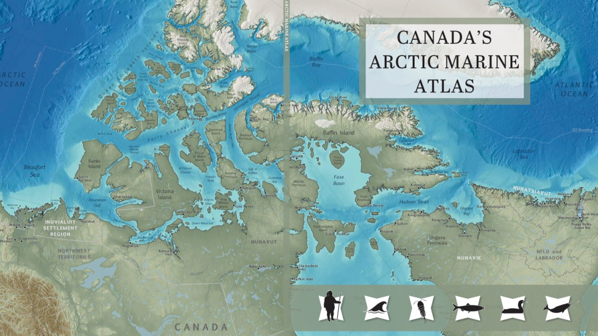 Arctic atlas, free to download, highlights effects of changing environment