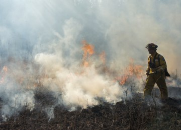 An Alberta government file image of crews working on a wildfire