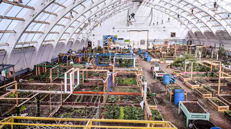 Inuvik's community greenhouse