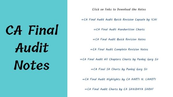 CA Final Audit Notes