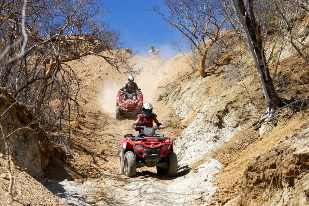 ATV-Off-Road-Runners