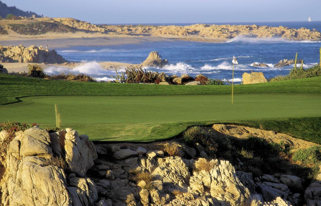 CDS-ocean-course-green