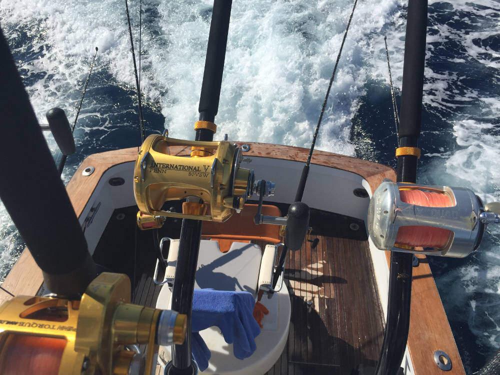 black betty sport fishing los cabos