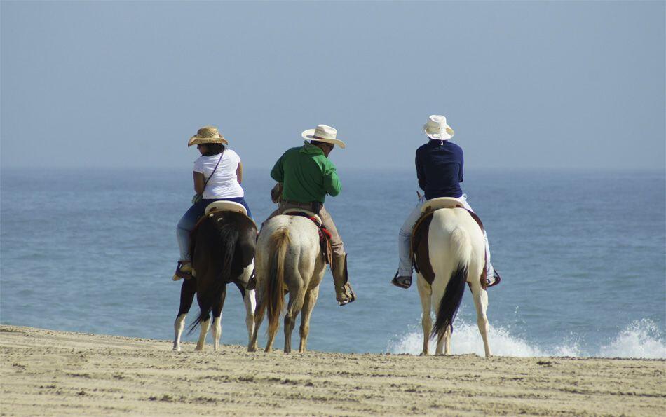 Cabo sunset horseback riding