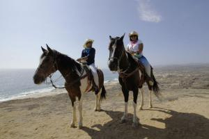 horseback riding on the beaches of cabo san Lucas Pacific coast Migrino beach cactus ATV Tours