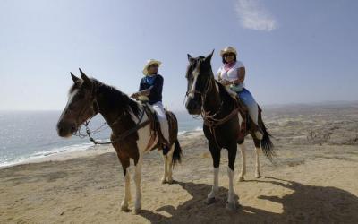 monta caballo en las playas de cabo san Lucas Pacific coast Migrino beach cactus ATV Tours