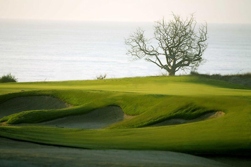 Club Campestre San Jose shows many bunkers undulations common Jack Nicklaus Designed golf questrogolf cabo activities cabo san lucas land tours