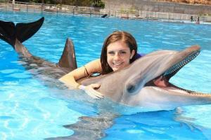 swim with the dolphins in cabo san lucas dolphin encounter