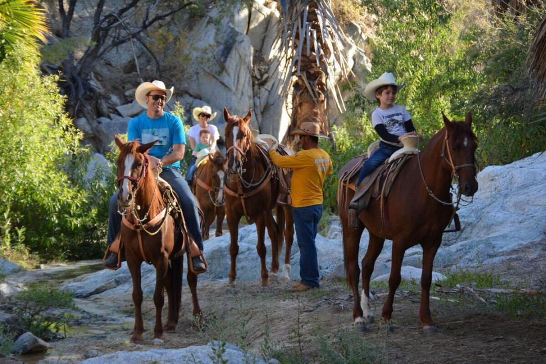 wild canyon the great fandango horseback riding tour