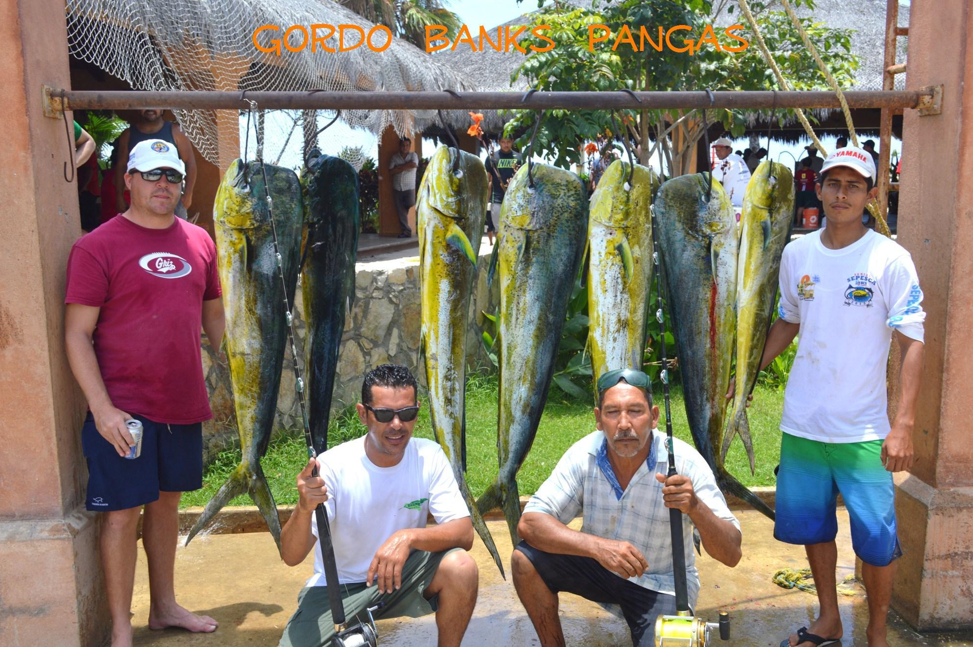 Los cabos fishing report cabo san lucas blog los cabos for San jose del cabo fishing report
