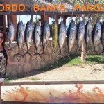 Los Cabos Fishing Report – July 23, 2017