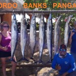 Los Cabos Fishing Report – November 19, 2017