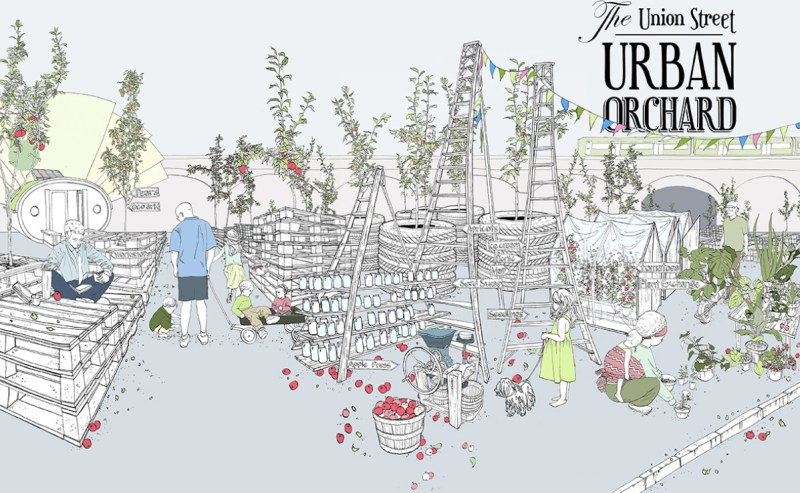 dzn_Urban-Orchard-by-Heather-Ring-2