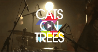 cats-on-trees-tikiboy