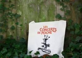 Les Concerts de Poche : De Beethoven à Aznavour, une merveilleuse programmation dans le Nord cacestculte