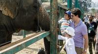 Visit the Elephant Conservation and Care Center - DAY TOUR FROM AGRA