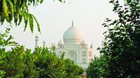 Avoid Hefty entry fee for Taj Mahal and visit nearby Mehtab Bagh