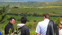 Food and Wine Tour to Sardinian Winery, Cagliari, Wine Tasting & Winery Tours