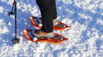 Winter Nordic Walking in Cortina d'Ampezzo, Cortina d'Ampezzo, Ski & Snow